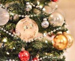 Новогодняя атмосфера в домах звезд: красивые елки Галкиных, Киркоровых и других артистов