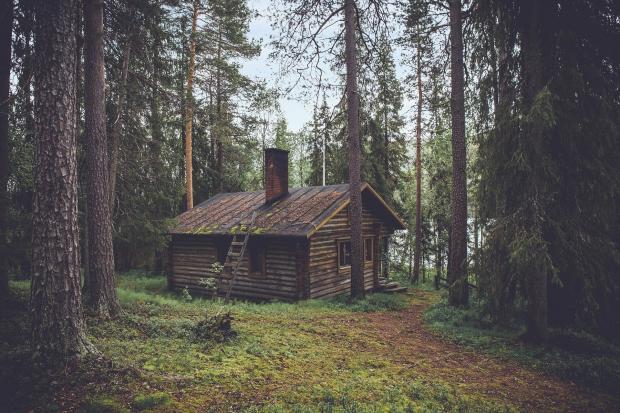 одиноко стоящий в лесу деревянный домик