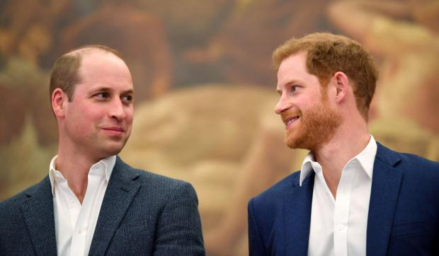 Принц Уильям и Принца Гарри