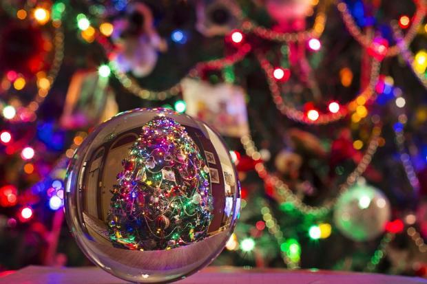 в хрустальном шаре отражается наряженная новогодняя елка