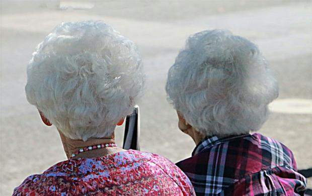две старушки с седыми волосами