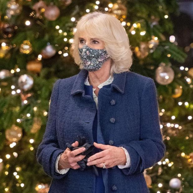 Камилла в маске для лица на фоне рождественской елки