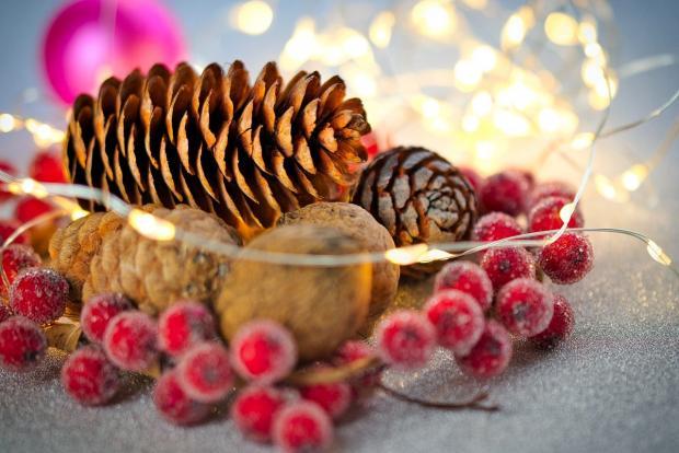 лежат горкой шишки с орехами и яркими замерзшими ягодами