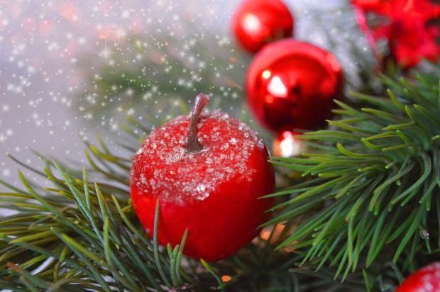 новогодняя сосна с красными шарами и яблоками
