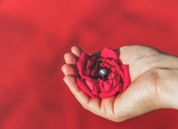 Красный цветок и обручальное кольцо в женской руке