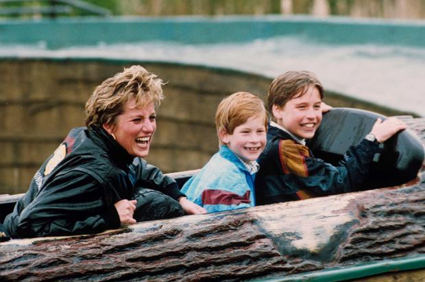 Принцесса Диана с детьми