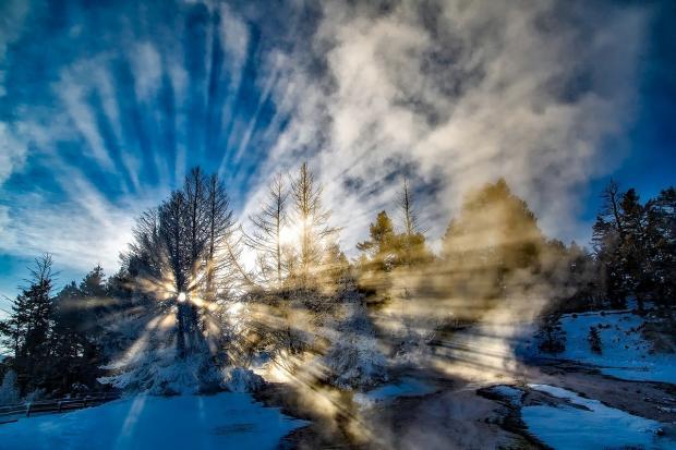 зимний пейзаж и солнце пробивается сквозь ветки деревьев