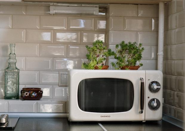 Белая микроволновая печь на столе возле зеленого цветка