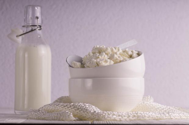 бутылка молока, творог в мисочке