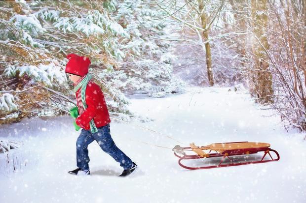 ребенок в красной куртке катит санки по зимнему лесу
