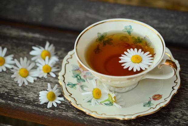 травяной чай в чашке цветки ромашки