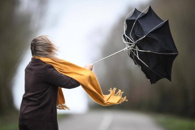 Девушка в черном пальто с желтым шарфом держит в руках зонт