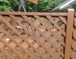 Маленький мопс за дальним забором