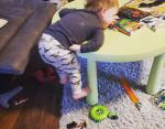Он боится спуститься со стола (обратите внимание на расстояние до пола).