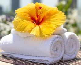Почему плохо пахнут полотенца и как избавиться от неприятного запаха