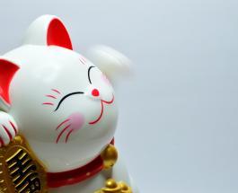 Приметы к деньгам: 6 знаков сулящих повышение финансового благополучия