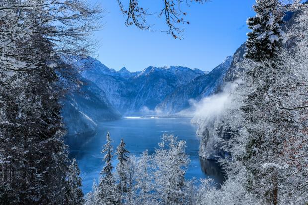 заснеженный лес и озеро