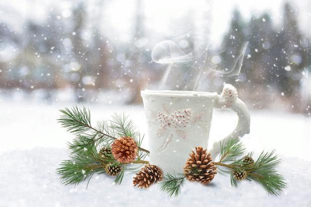 белая кружка на снегу и сосновая ветка с шишками