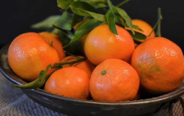 ветка мандаринов лежит на тарелке