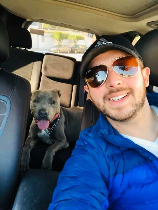 Пес и мужчина в машине