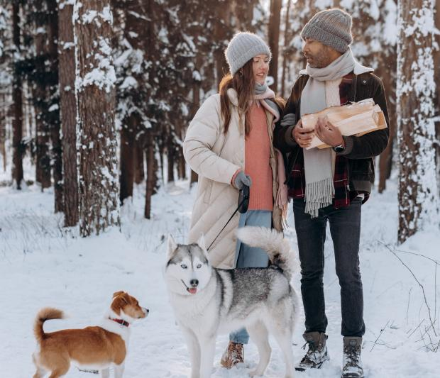 Парень и девушка гуляют с собаками в зимнем лесу