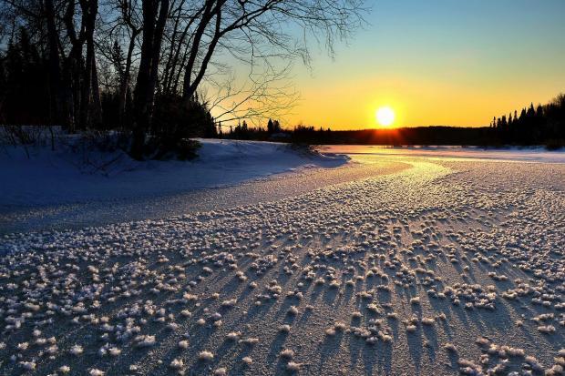 солнце поднимается над зимним лесом