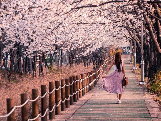 девушка в розовой юбке идет по парку