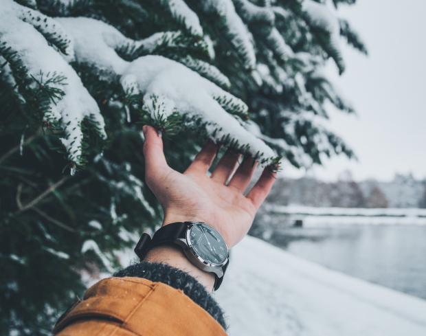 Мужская рука держит заснеженные ветви ели