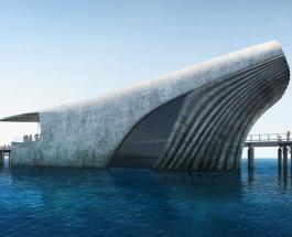Морская обсерватория с уникальным дизайном: в Австралии построят здание в форме кита