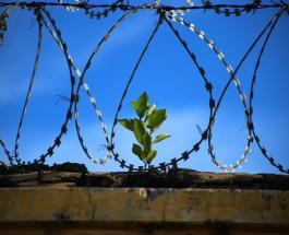 Американец отсидевший в тюрьме 68 лет теперь не знает как жить в современном мире