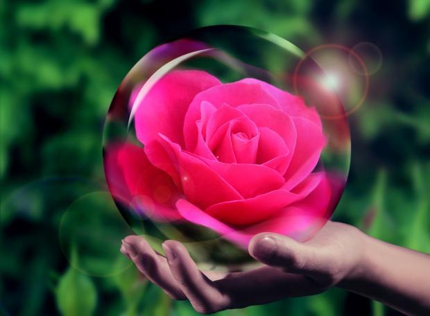 на ладони лежит хрустальный шар с розой внутри