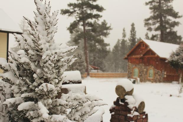 Деревянные домики в заснеженном лесу
