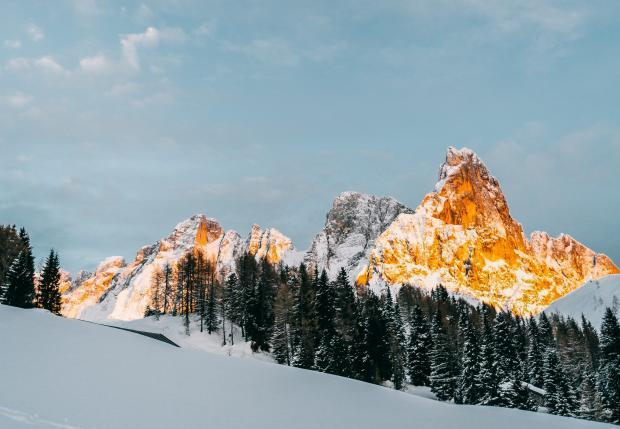 заснеженный лес и горы