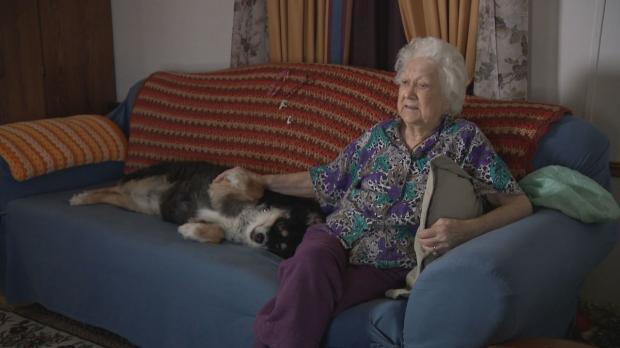 пожилая женщина и собака на диване