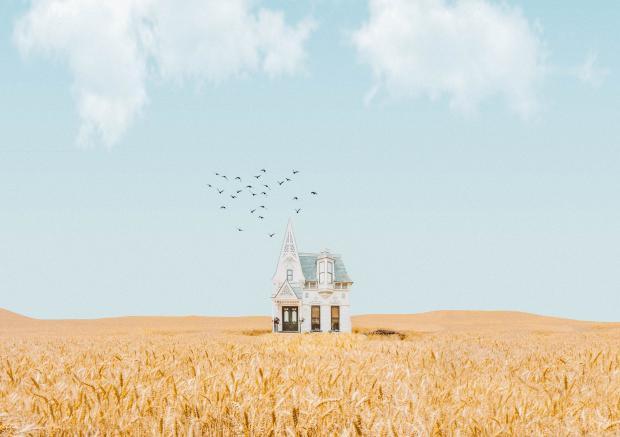 белый дом в пшеничном поле