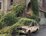 Заброшенное здание и машина в плену растения