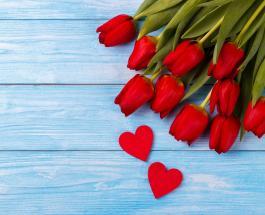"""Как """"продлить жизнь"""" букету из тюльпанов: 4 полезных совета"""
