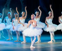 """Балерина станцевала """"Лебединое озеро"""" при температуре -15 ради спасения живых лебедей"""