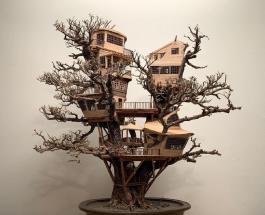 Дом на дереве бонсай: фото удивительных работ дизайнера Дэйва Крика