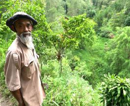 Мужчина посадил 11 тысяч деревьев за 24 года чтобы спасти несколько деревень от засухи