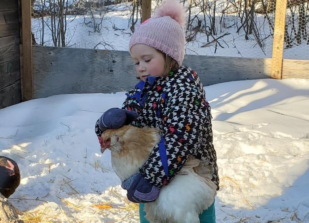 девочка в теплой одежде держит в руках курицу