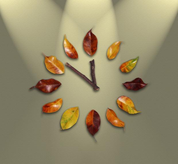 инсталляция циферблата из осенних листьев