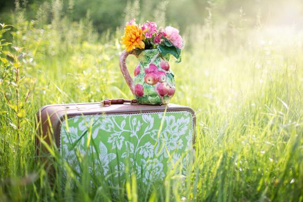 ваза с цветами на чемодане, стоящем в высокой траве