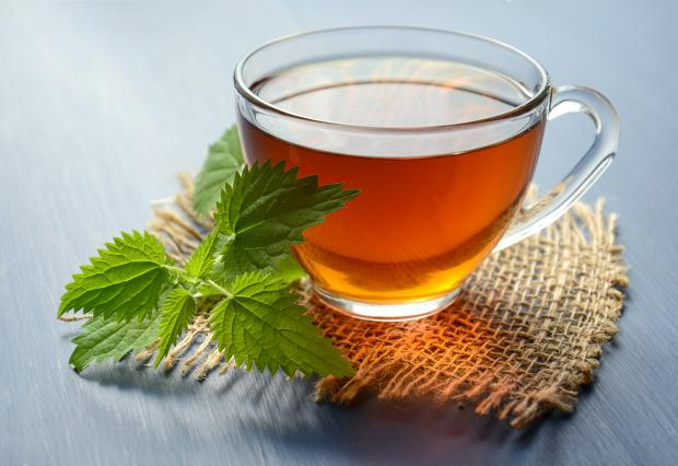 чай в чашке и веточка крапивы