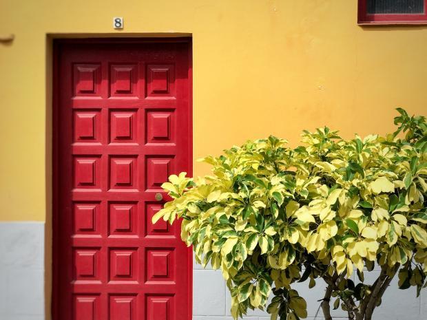 входная дверь красного цвета, куст растения