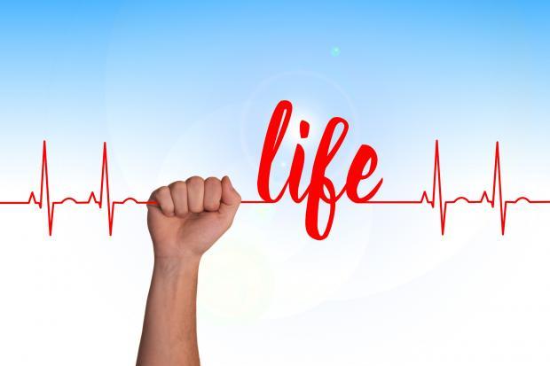 """пульс в руке, надпись """"life"""""""