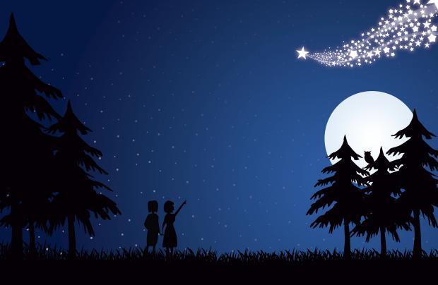 две девочки среди деревьев, ночь, звездопад