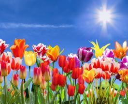 Тест-предсказание на апрель: выбранный пейзаж даст совет на будущее