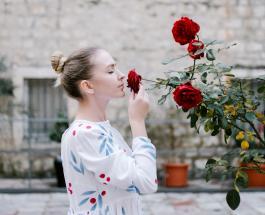 Удаление неприятных запахов и обработка растений: как использовать перекись водорода в быту