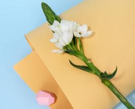 Открытки с Благовещением: поздравления и картинки с праздником отмечаемым 7 апреля